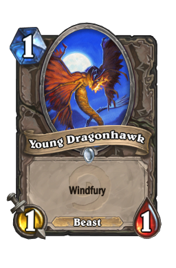 Young Dragonhawk