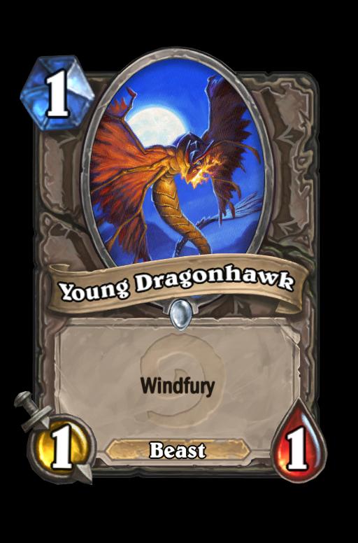 Young Dragonhawk Hearthstone kártya