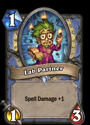 Lab Partner