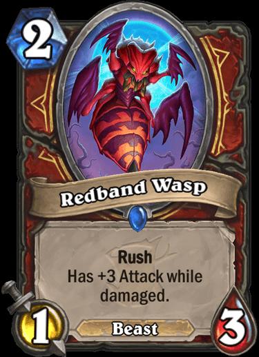 Redband Wasp